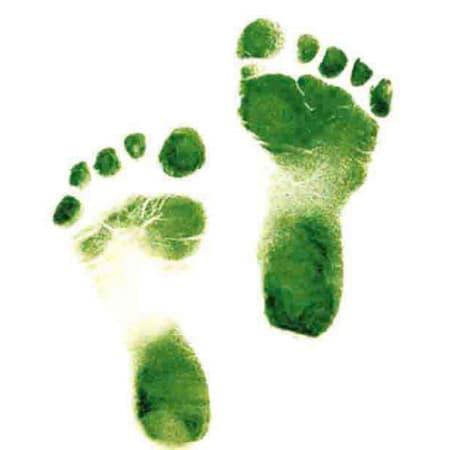 Qué es la huella ecológica y para que sirve